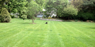 lawn-installation-new-yotk